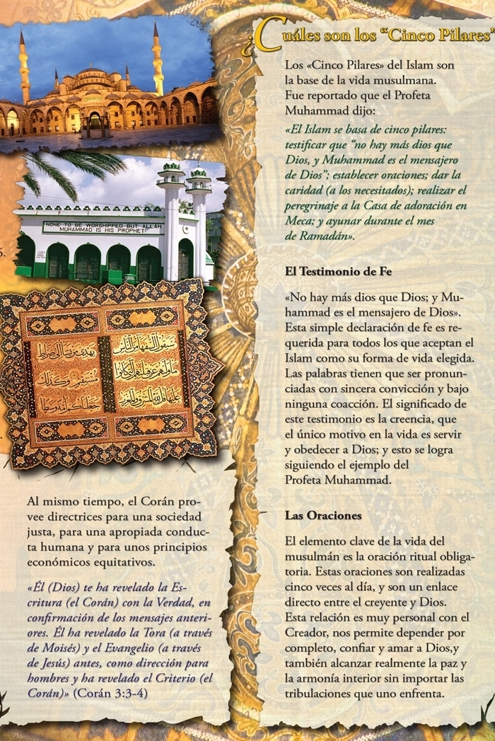 Picture of Descubra Islam: El Lector